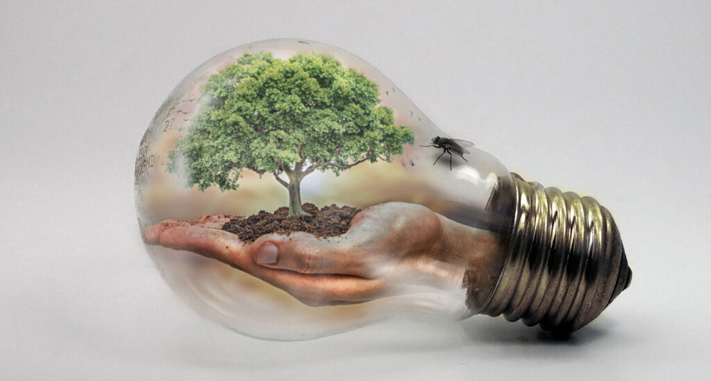 Hand som håller ett träd inuti en lampa
